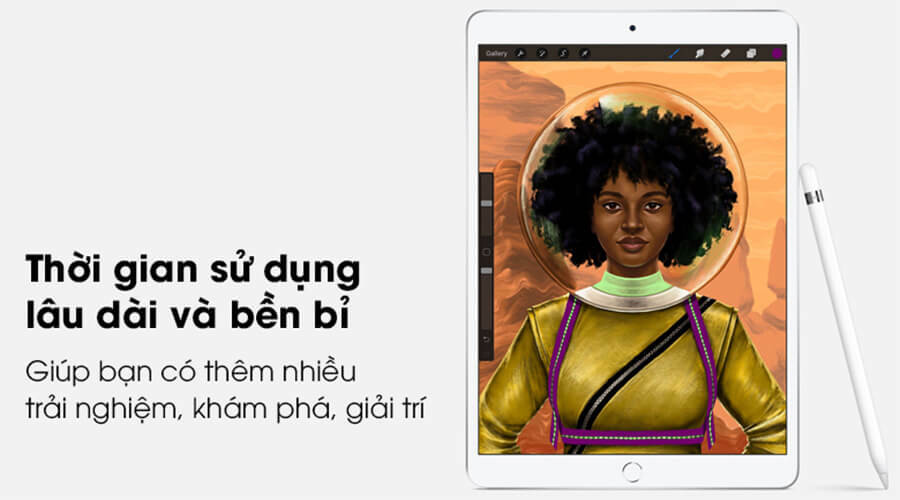 iPad Air 3 (10.5 inch) 2019 - Hình 5